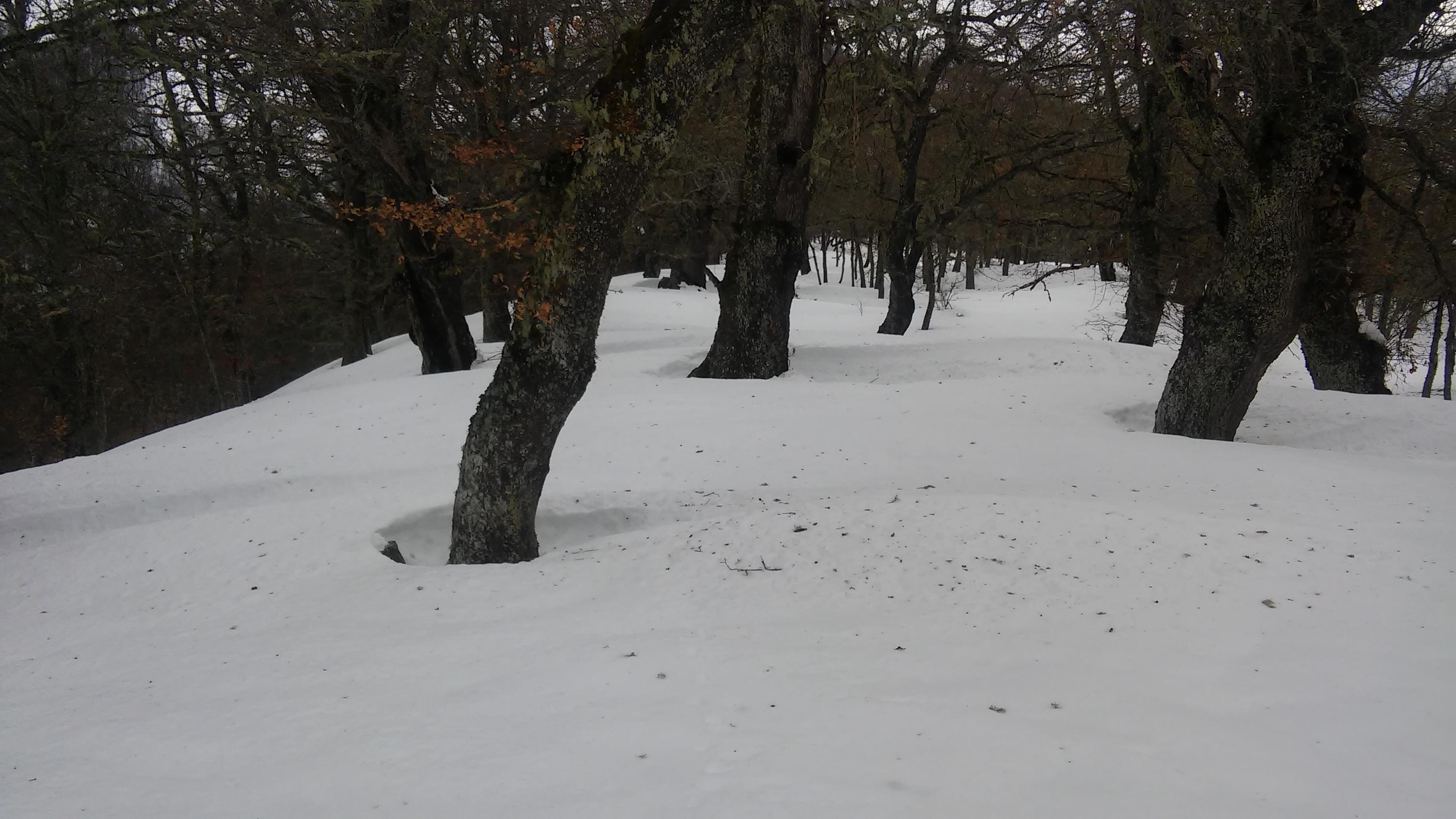 Raquetas de nieve Cahecho