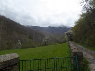 Casas rurales en Cantabria. Hayedo