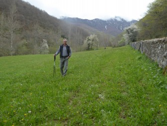 Casas rurales en Potes. Hayas (2)