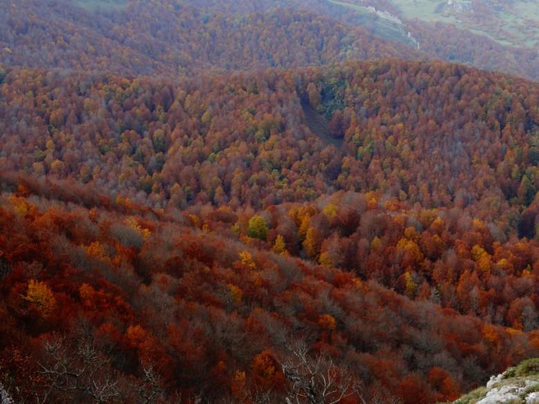 otoño en Potes