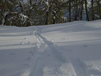 Huellas esqui