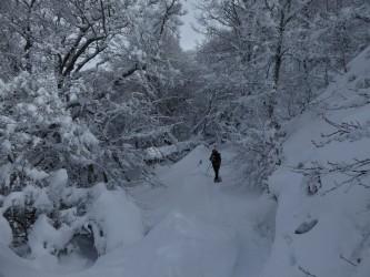 Salida en raquetas de nieve por Liébana